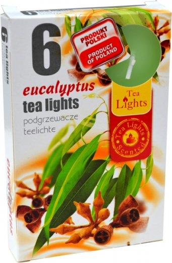 phoca_thumb_l_eucalyptus